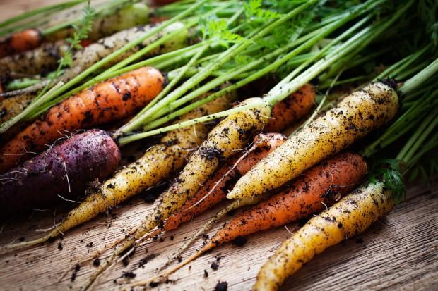 Analityk: Rynek eko-żywności będzie dynamicznie rósł przez kolejne lata