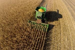 Firmy azjatyckie poszukują na polskim rynku dostawców nawozów i pasz
