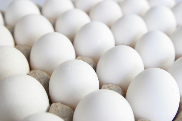 Fermy Drobiu Woźniak: Zgłoszenie o salmonelli było próbą wyeliminowania nas z rynku