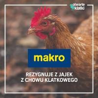 Makro Polska wycofa ze sprzedaży jaja z chowu klatkowego do 2025 r.