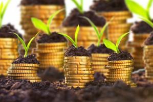 ARiMR wypłaciła rolnikom 96,83 proc. z puli środków na płatności bezpośrednie za 2016 r.