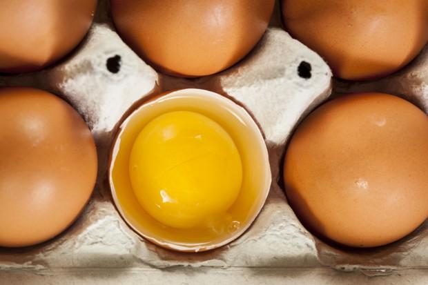 KIPDiP ostrzega: Bez klatek ceny jaj pójdą w górę