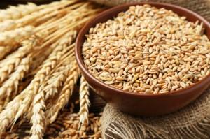 Rosną ceny zbóż konsumpcyjnych