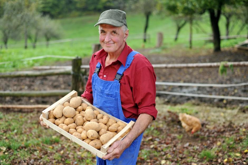 Zmiany przepisów dotyczących zawierania umów rolnik – przetwórca