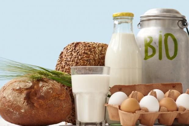 Raport: Najczęściej kupowana żywność ekologiczna to: jajka, warzywa oraz owoce