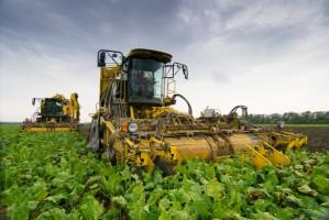 W Rosji spodziewane są mniejsze zbiory roślin uprawnych