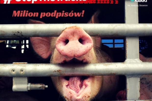 Stowarzyszenie Otwarte Klatki przeciwko długodystansowemu transportowi zwierząt