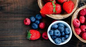 Owoce jagodowe podbijają europejski rynek spożywczy. Rośnie produkcja, konsumpcja i świadomość konsumentów