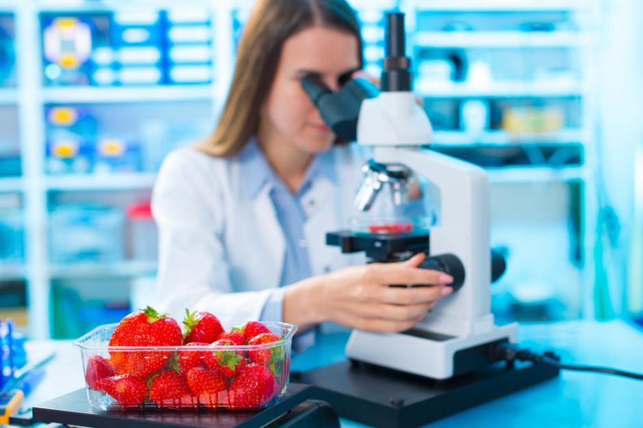 Rynek hurtowy Bronisze rozpoczął współpracę z laboratorium UO-Technologie
