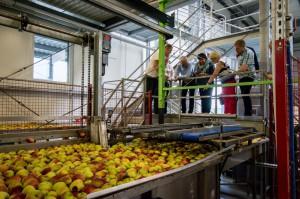 Producenci cydrów i win owocowych z UE odwiedzili Polskę