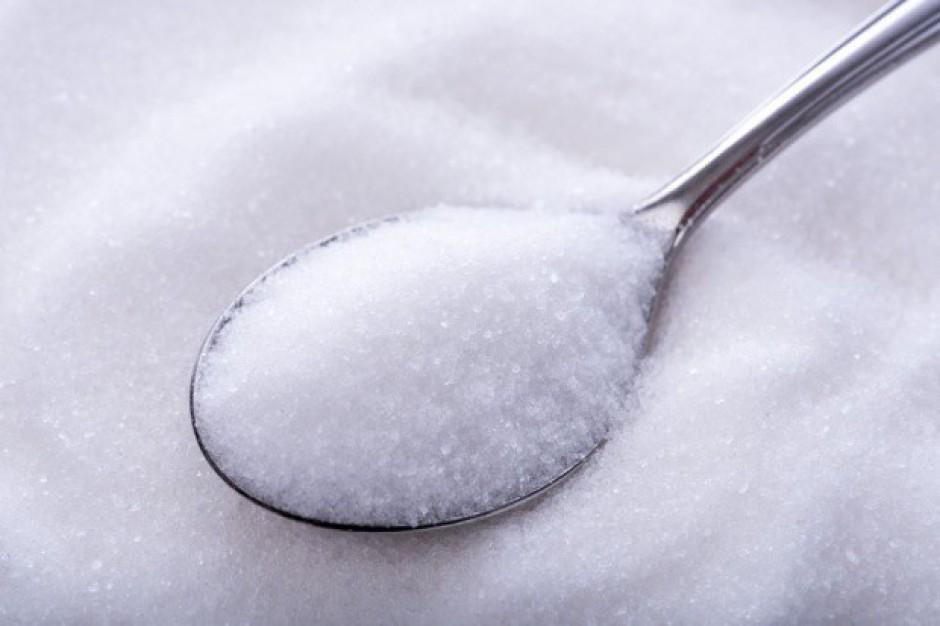 Ekspert: cukier tanieje, bo jest go dużo