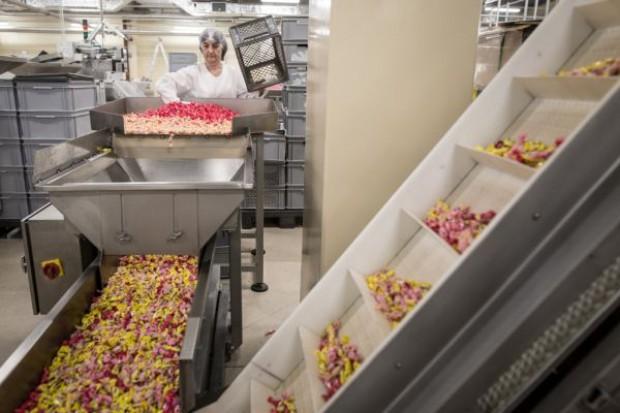 FC Pszczółka uruchomiła nową fabrykę, zapowiada nowe produkty