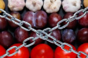 Rosja przedłuża embargo na eksport żywności