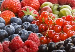 1 lipca - Dzień Polskiej Borówki iMiędzynarodowy Dzień Owoców