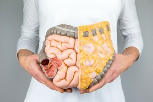 Bakterie w jelicie mają związek z emocjami