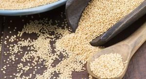 Mintel: Amarantus składnikiem coraz większej liczby nowych produktów żywnościowych