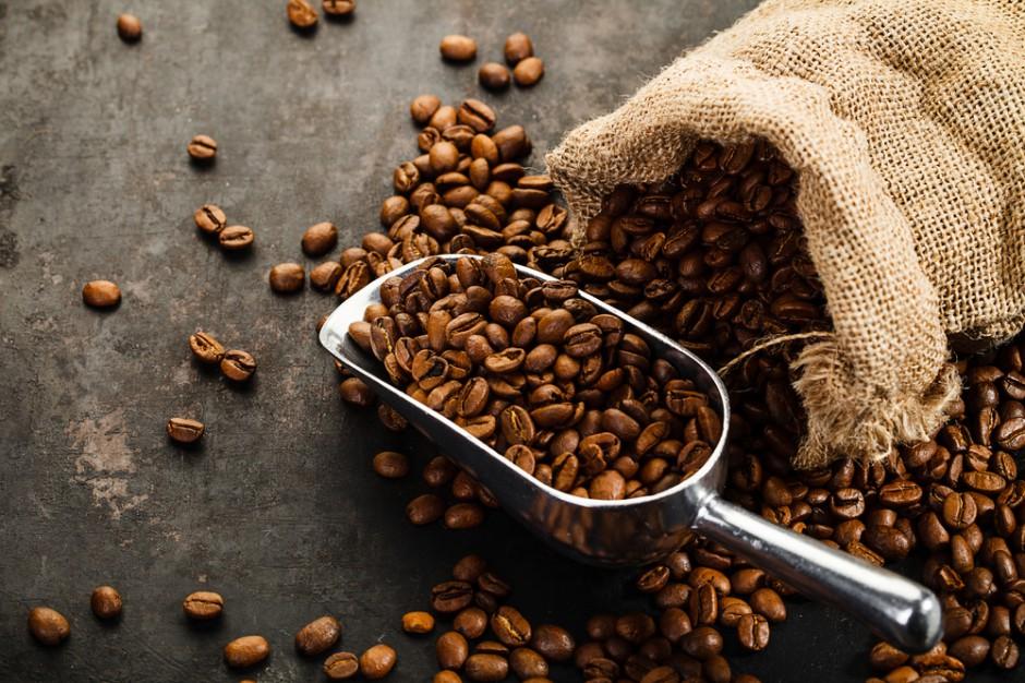 Badanie na myszach: Kawa wspomaga utratę wagi, ale w dawce ok. 30 filiżanek wypitych przez człowieka