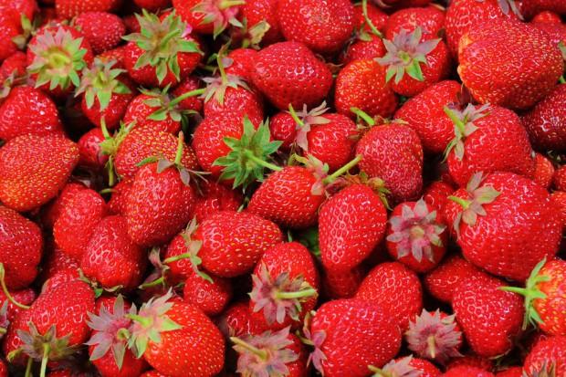 Przetwórcy owoców miękkich liczą straty