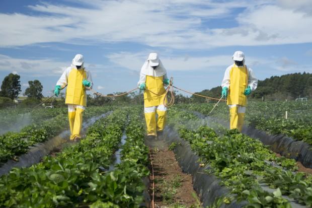 Europol: Przejęto 122 t nielegalnych pestycydów