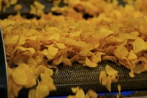 PepsiCo uruchomiła dwie nowe linie do produkcji słonych przekąsek w fabrykach Frito Lay w Polsce (foto)