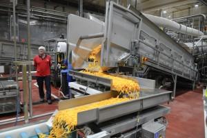 Zdjęcie numer 2 - galeria: PepsiCo uruchomiła dwie nowe linie do produkcji słonych przekąsek w fabrykach Frito Lay w Polsce (foto)