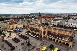 Władze Krakowa chcą produkować miód z własnych pasiek