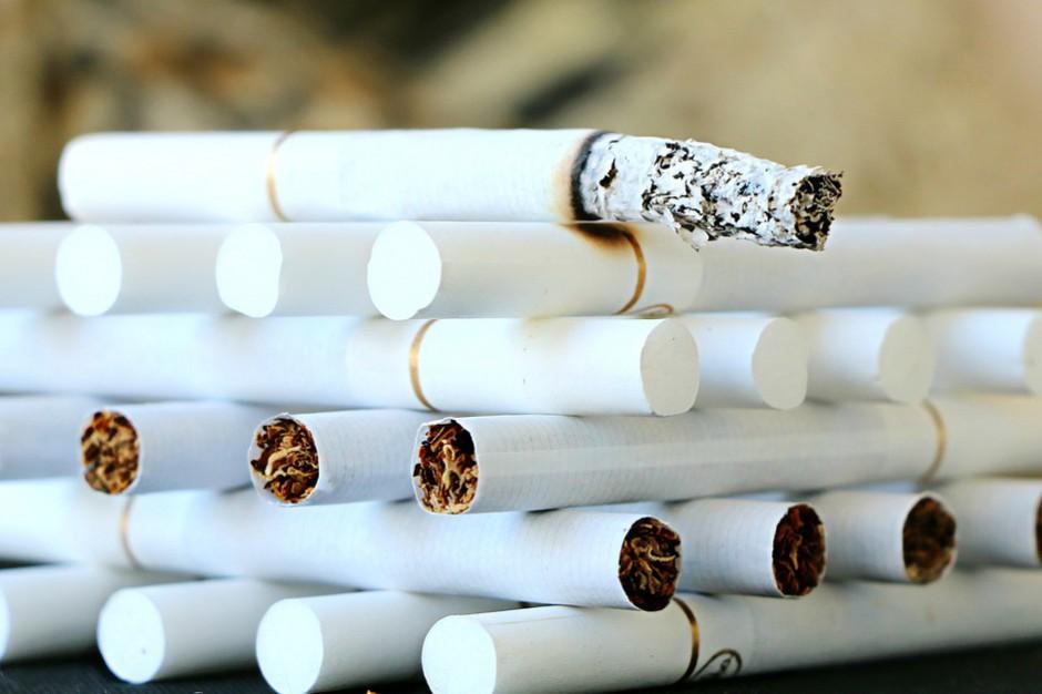 W 2016 r. do Polski trafiło coraz mniej papierosów z przemytu