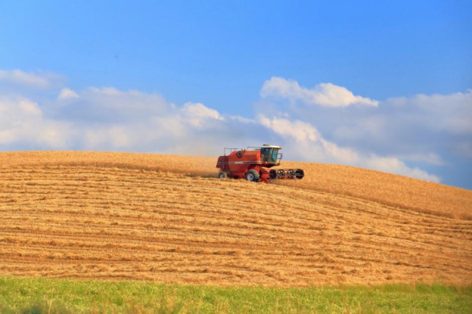 Koniunktura w rolnictwie - analiza IERiGŻ