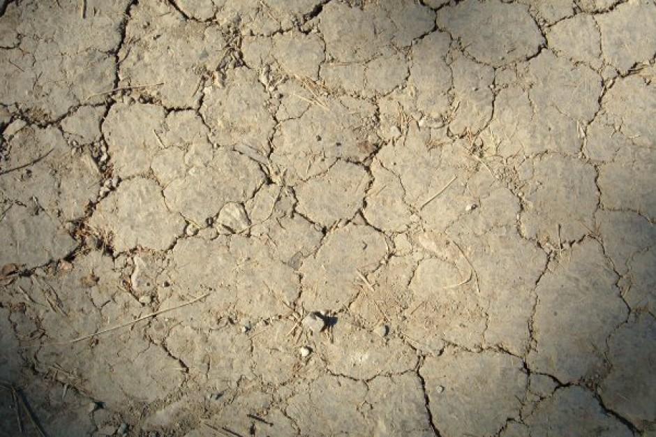 Wokół Rzymu z powodu suszy racjonowana jest woda