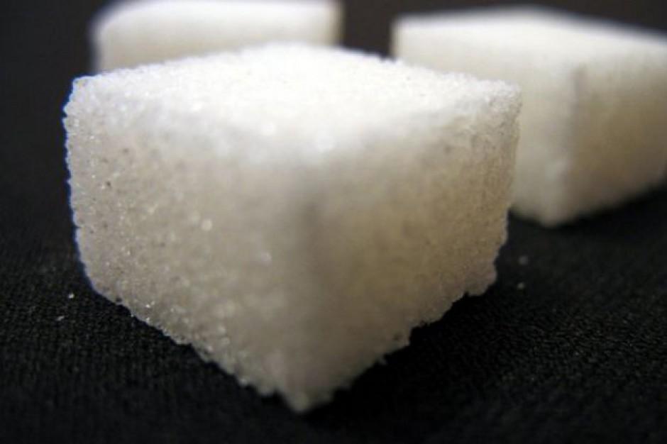 IERiGŻ: W maju br. na krajowym rynku ceny cukru były stabilne