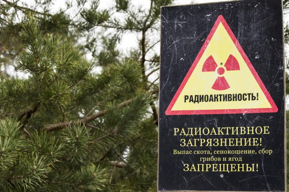 Białoruś chce produkować mięso na terenach skażonych promieniowaniem