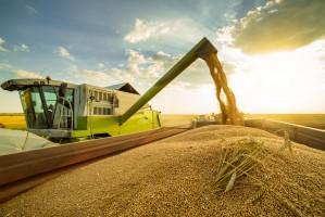 Rosja może wyeksportować ponad 40 mln ton zbóż w 2017/2018
