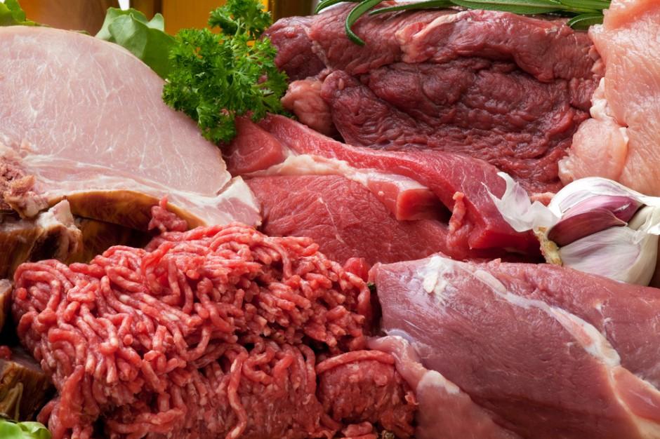 Czechy: Spadła produkcja wołowiny i wieprzowiny