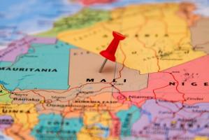 Rząd Mali poszukuje współpracy z polskimi firmami drobiarskimi