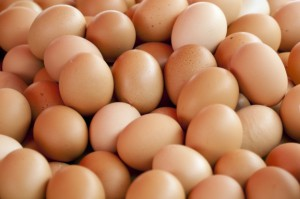 MRiRW uspokaja: Skażone jajka z Belgii nie trafiły do Polski