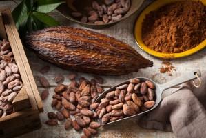 Kakao w formie cold brew cocoa może stać się kawiarnianym hitem