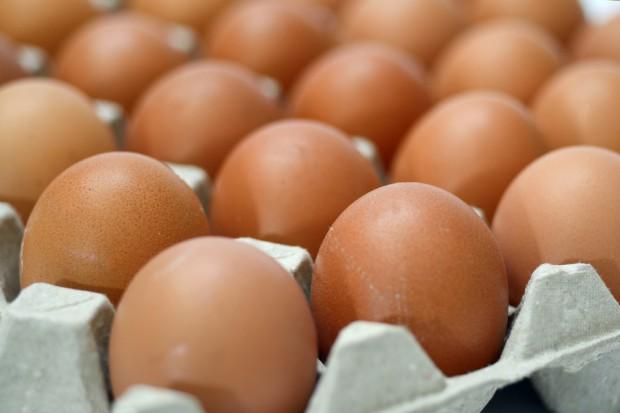 Belgia chce skarżyć holenderską firmę odpowiedzialną za skażenie jaj