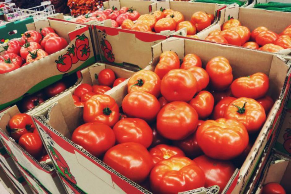 Słaby początek pomidorowego sezonu