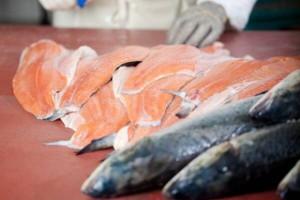 Marine Harvest będzie produkował olej i mączkę z ryby w Ustce