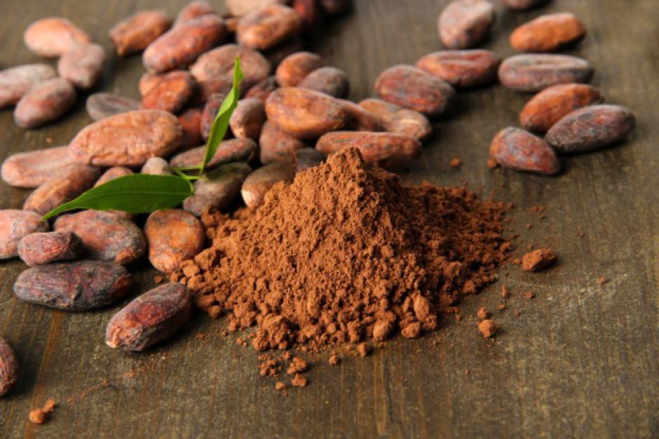 Ceny kakao pozostaną stabilne w krótkim okresie