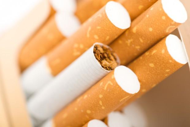 Wykryto blisko 700 tys. sztuk nielegalnych papierosów