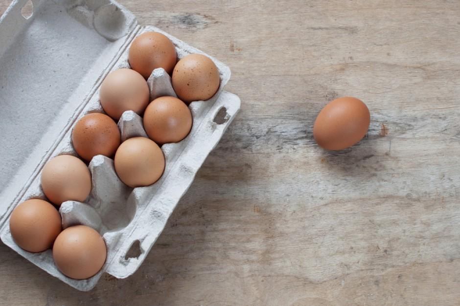 Agencja dpa: Skażone fipronilem jaja wykryto w 40 krajach