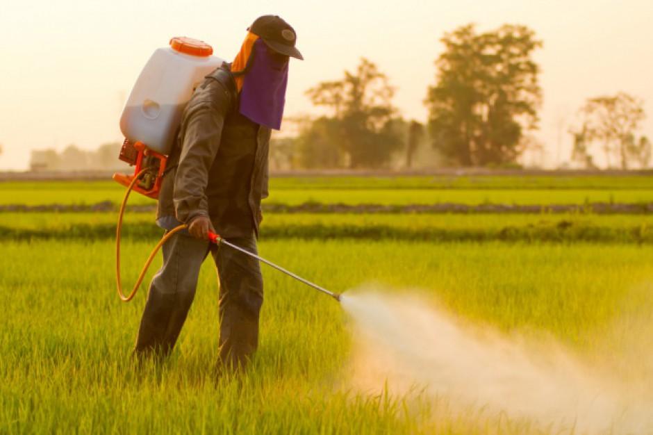 Europejska żywność traci na konkurencyjności przez regulacje UE