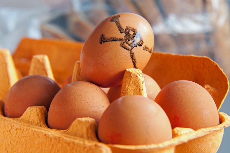 Fipronil: Sieci handlowe w Holandii żądają odszkodowań od dostawców jaj