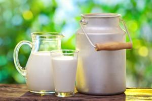 Dostawy produktów mlecznych do szkół rozpoczną się od 2 października 2017 r.