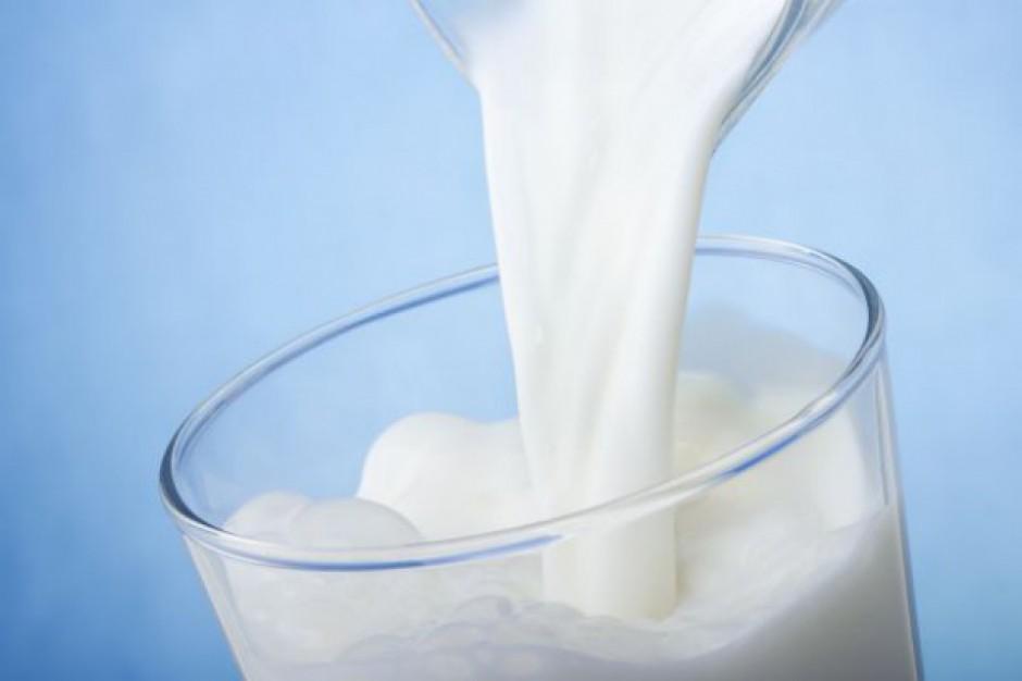 Rosyjskie statystyki produkcji mleka surowego różnią się od rzeczywistości