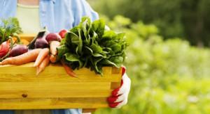 Ekspert: Nasila się tendencja do podszywania się pod żywność ekologiczną