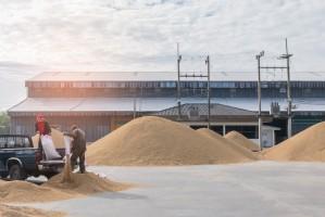 Ceny skupu zbóż na przestrzeni tygodnia nie uległy zmianie