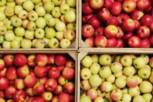 W kolejnych miesiącach ceny jabłek przemysłowych mogą wzrosnąć