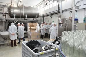 Resort rolnictwa tworzy specjalny zespół w odpowiedzi na problemy polskiego winiarstwa